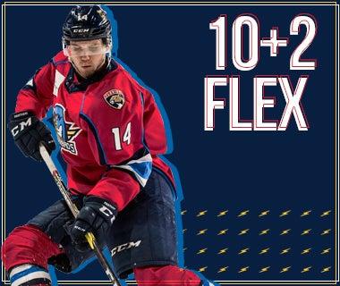10 Flex.jpg