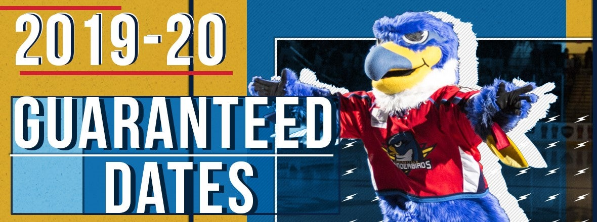 DEL Colorado Thunderbirds 2013 Eishockey Pin NHL Fanartikel Weitere Wintersportarten