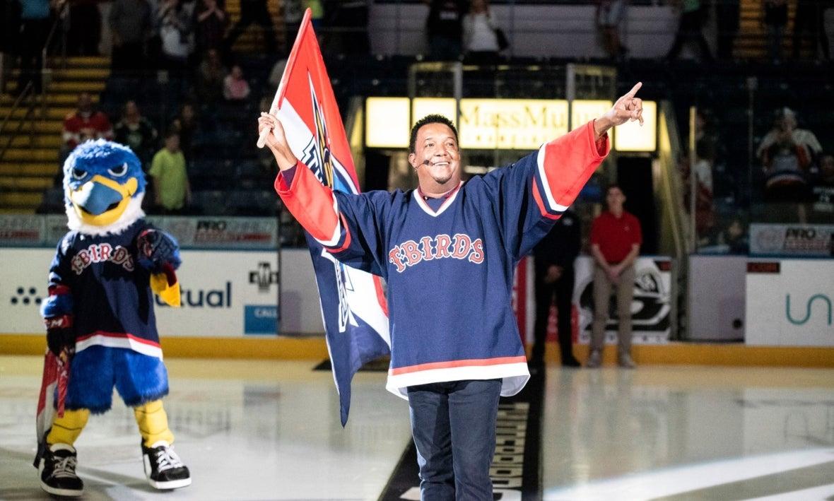 Eishockey Pin NHL DEL Colorado Thunderbirds 2013 Fanartikel Weitere Wintersportarten