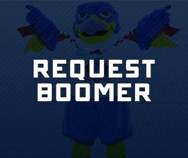 boomer 380x320.jpg