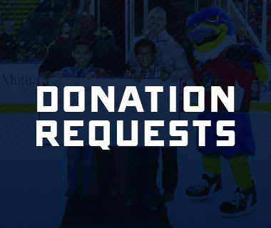 donation 380x320.jpg