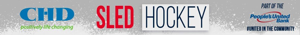 sled hockey copy.jpg