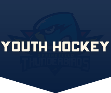 youth hockey 380x320.png